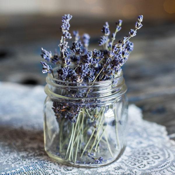 Lavender oil for Lava Beads