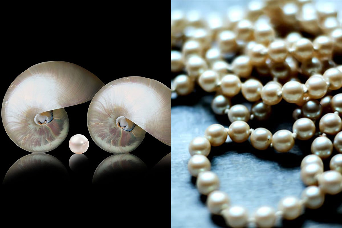 Mother of Pearl vs Pearl