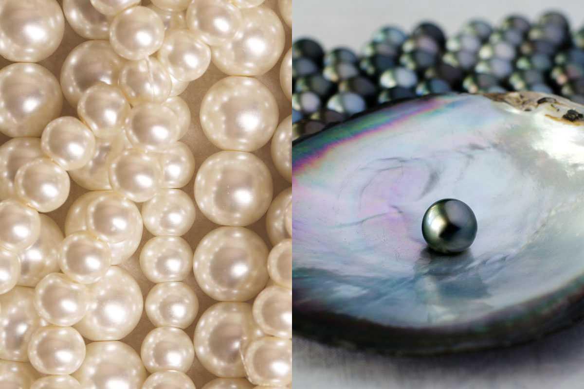 Pearl price