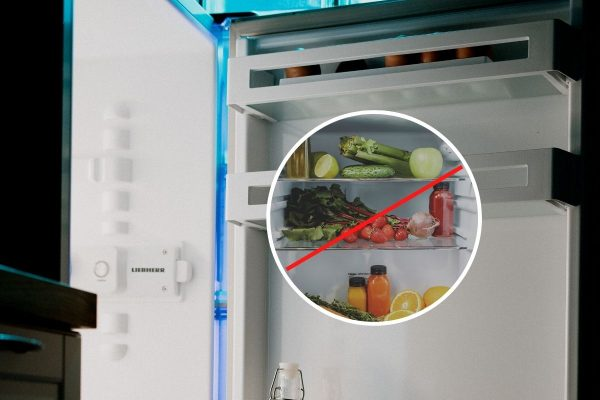 refrigerator rose flower