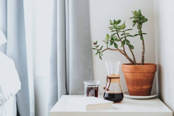 feng-shui-living-room-invest-indoor-house-plant