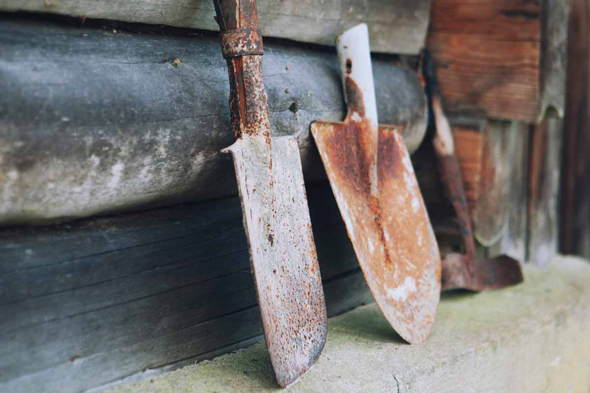 How to Clean and Remove Rust from Garden Tools