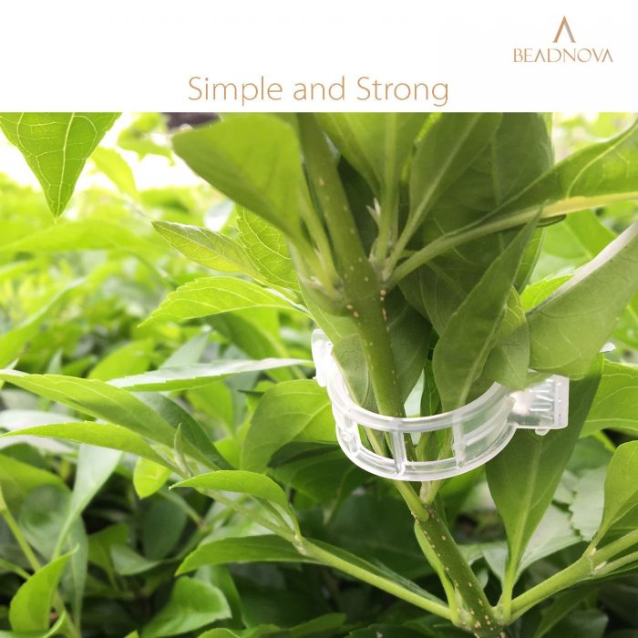Tomato-Clips-Plant-Support-Clips-300pcs