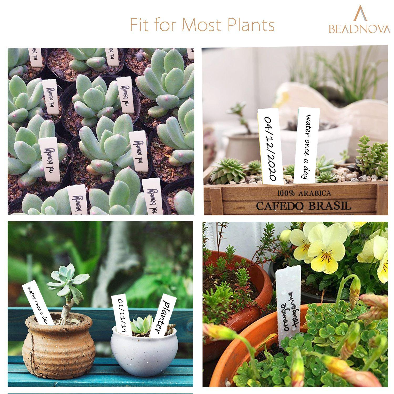 Plant-Labels-Plant-Tags-Garden-Labels-White-100-Pcs