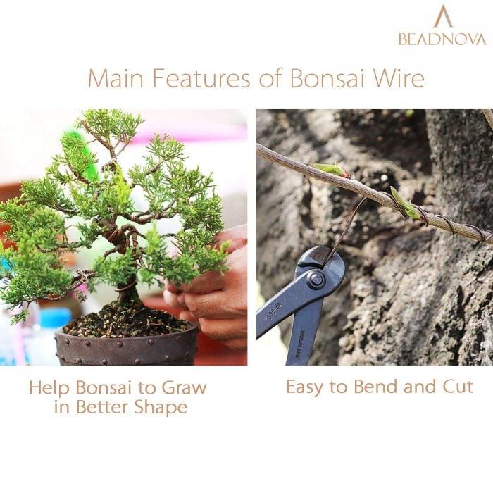 BEADNOVA Bonsai Tree Wire 33 Feet Black Aluminum Wire Bonsai Tree Training Wire for Indoor and Outdoor Bonsai Plant (Black, 1mm, 30m)