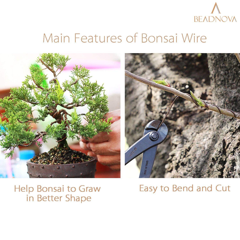 BEADNOVA Bonsai Tree Wire 33 Feet Copper Aluminum Wire Bonsai Tree Training Wire for Indoor and Outdoor Bonsai Plant (Copper, 1mm, 30m)